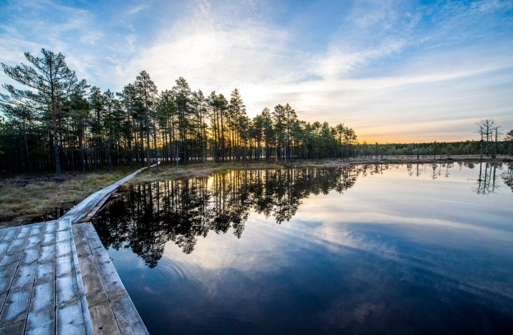Фотографии, которыми можно удивить: лучшие места для фотосессий в Эстонии