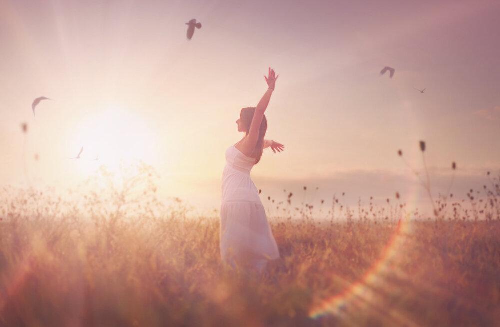 Vabastamise tseremoonia: inimene ei ole enne valmis muutuma ja oma vanadest käitumismallidest lahti laskma, kui ta on täiesti põhjas ära käinud