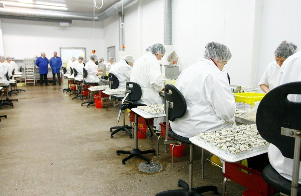 AS Spratfili tehas, arhiivifoto