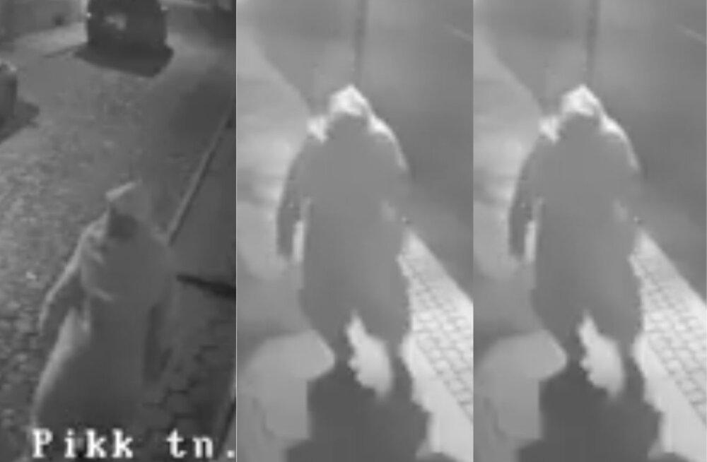 VIDEO | Aita tuvastada jänesekostüümis pahalase isik, kes lõhkus öösel Viljandi vallamaja ukse
