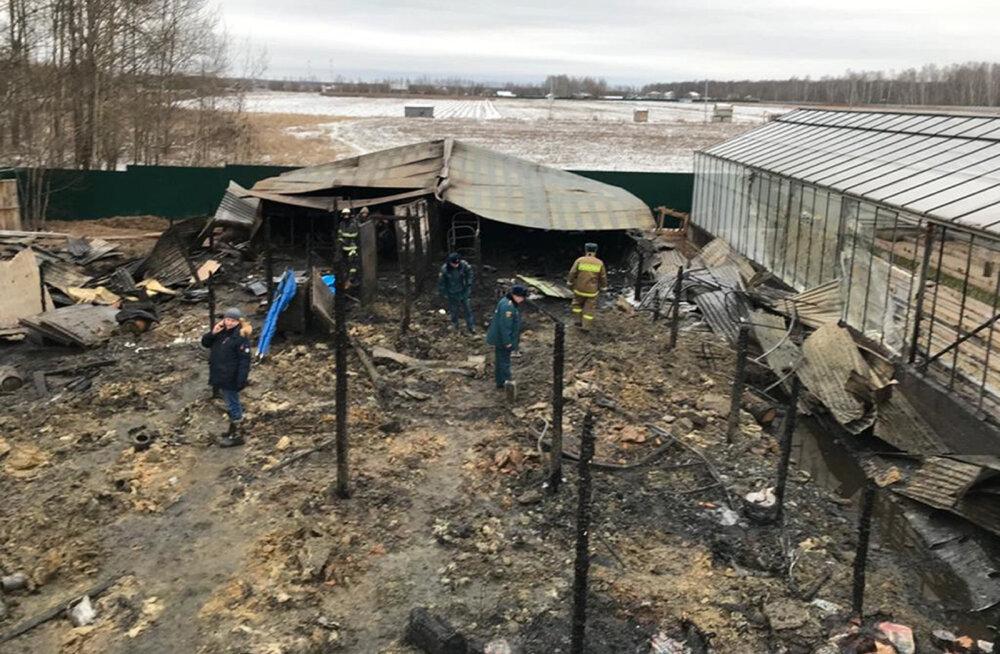 Moskva oblastis hukkus tulekahjus kasvuhoonekompleksis kaheksa inimest