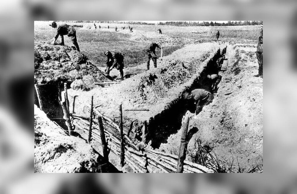 Anu Jänes 1941 aasta suvest: ema oli juba arvestanud kõigi nelja lapse surmaga ja tal oli lõpmata hea meel, kui kaks elusana välja ilmusid