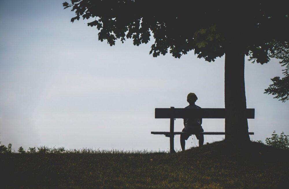 10 huvitavat fakti üksilduse kohta