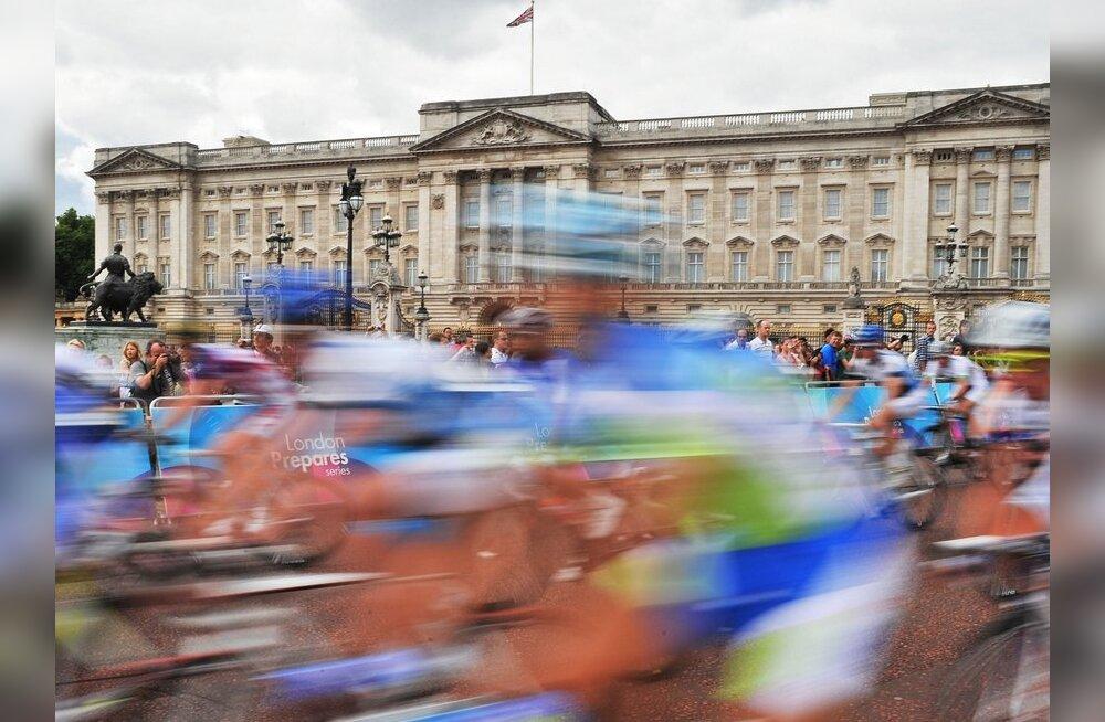 Ratturid mööduvad Buckinghami paleest