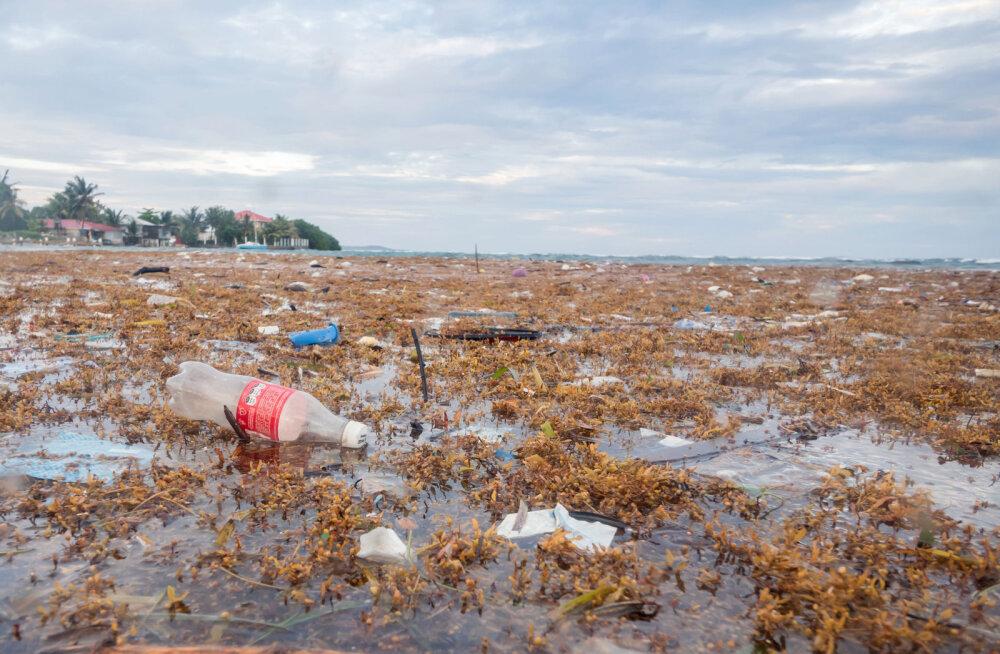 Värske ÜRO raport: inimühiskond on looduse hävimise tõttu hädaohus