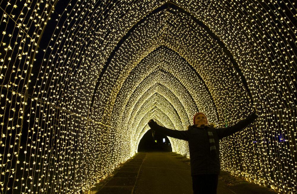 1 декабря в Юрмале снова откроется парк световых скульптур