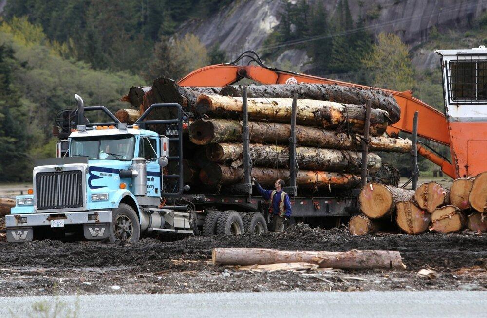Trumpi väitel on Kanada puit riiklikult subsideeritud ligi viiendiku ulatuses, mistõttu ta lajatas imporditavale puitmaterjalile 20% tollimaksu. Fotol laaditakse palke veoautole Briti Columbia provintsis Kanadas.
