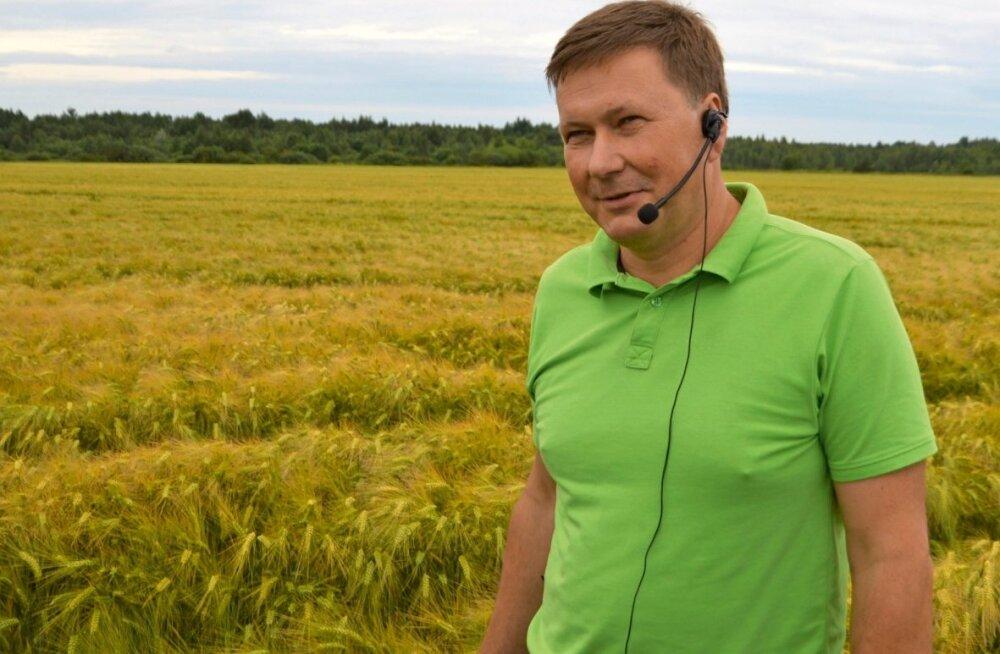 Talioder on Eestis uus kultuur, kuid Aivar Treibergil selle kasvatamine õnnestus.