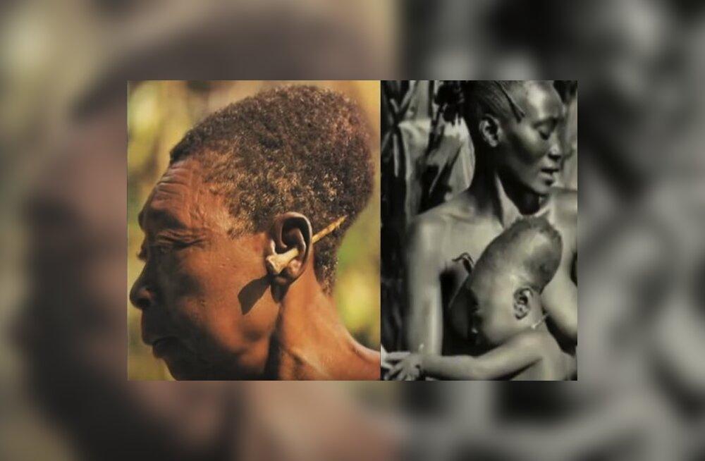 Удлиненные черепа как символ красоты и богатства: феномен африканского племени мору-мангбету