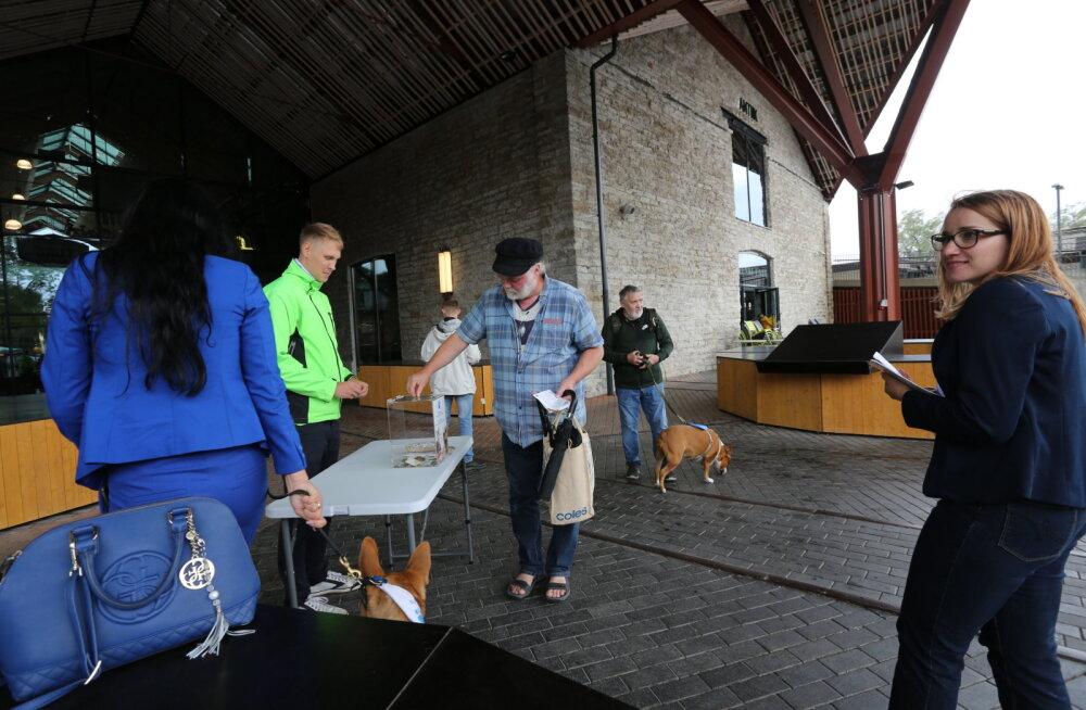 Молодежь Пыхья-Таллиннского круглого стола собирает пожертвования для приюта животных