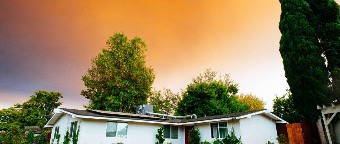 Suured puud maja juures võivad ohtu seada elanike elu ja vara