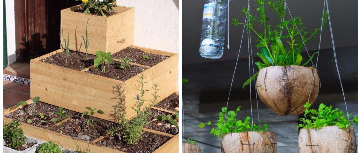 NÕUANDEID: kuidas saab väiksemastki rõdust aiamaa