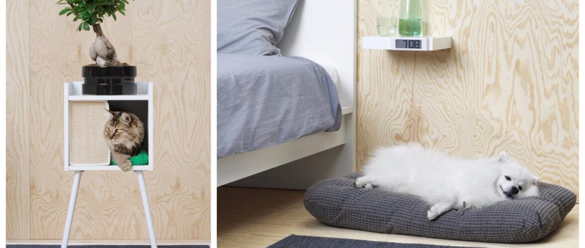 FOTOD │ Vaata pilte IKEA uhiuuest lemmikloomakollektsioonist