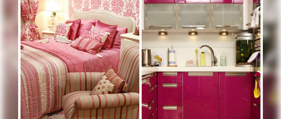 FOTOD: Kui armastad sisekujunduses roosat...