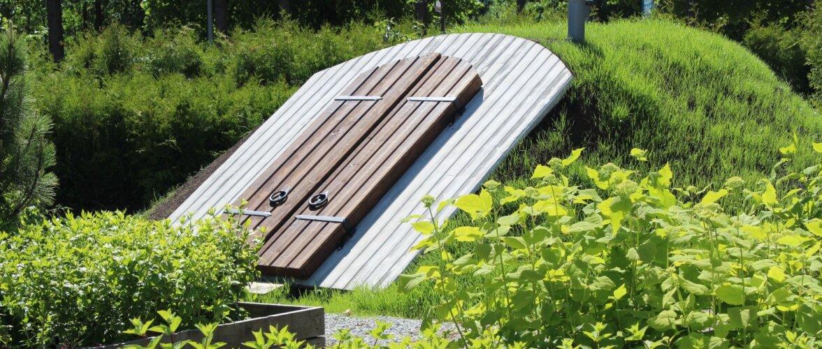 See on parim koht, kuhu koguda oma värsked aiasaadused!