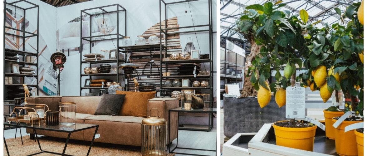 FOTOD │ Baltimaade suurim kodu- ja aianduskeskus avas uksed