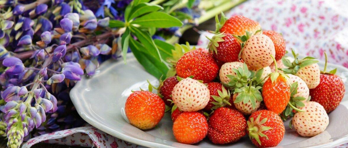 Valged ja punased maasikad näevad laual koos efektsed välja.