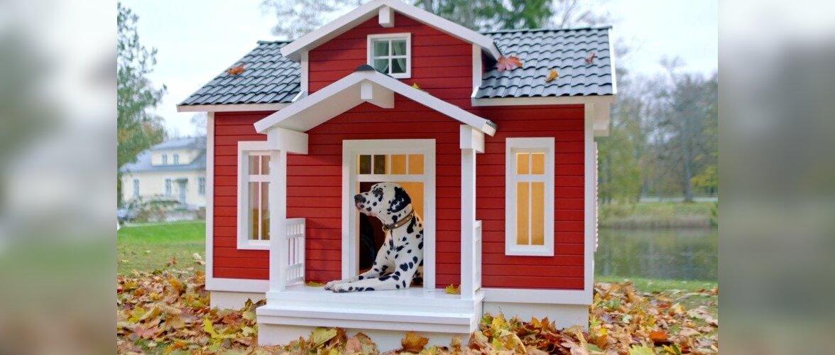 VIDEO: Kas ostaksid oma koerale nutikate lahendustega villa?
