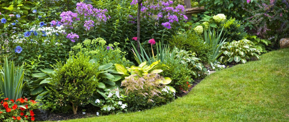 12 enam levinud viga, mida aiatöödel kindlasti vältida tasuks