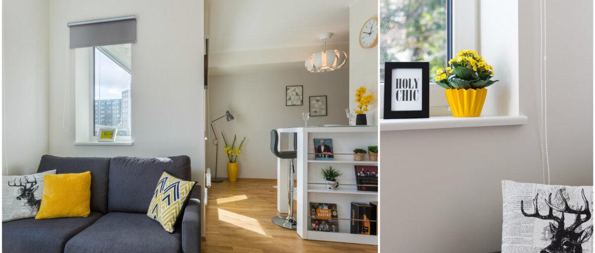 Skandinaavia stiilis pisike kodu püüab pilku nutikate lahendustega