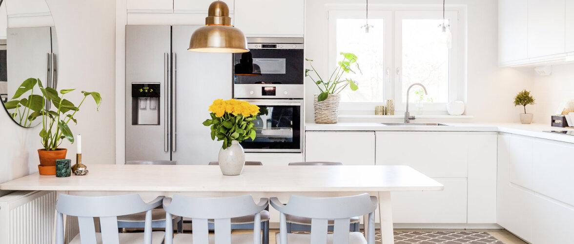 FOTOD | Valge köögi mitu palet modernsest maalähedaseni