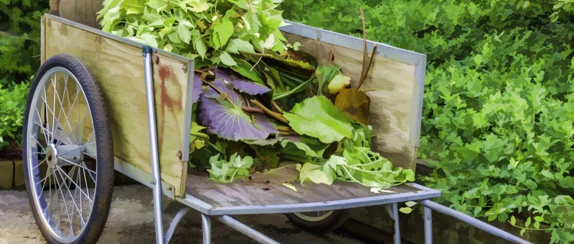 7 võimalust, kuidas kasutada vineeri aias. Vaata videost lisaks, kuidas ehitada vineerist põrand
