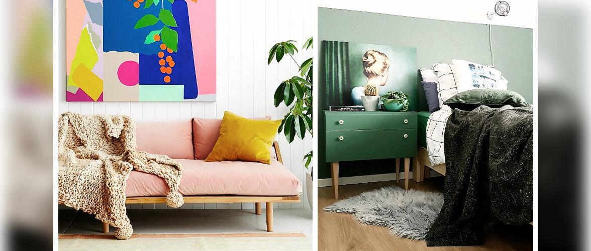 RAHVUSVAHELINE ÕNNEPÄEV: ammuta inspiratsiooni värvilistest kodudest