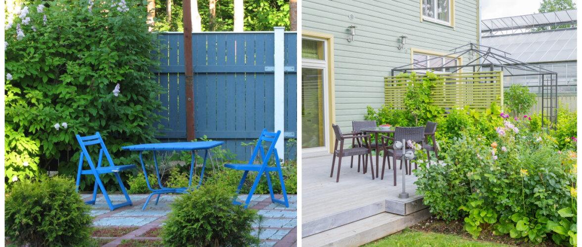 Kuidas hoiduda aia-apsakatest: kogemusi jagavad maastikuarhitekt, aiadisainer ja hobiaednik