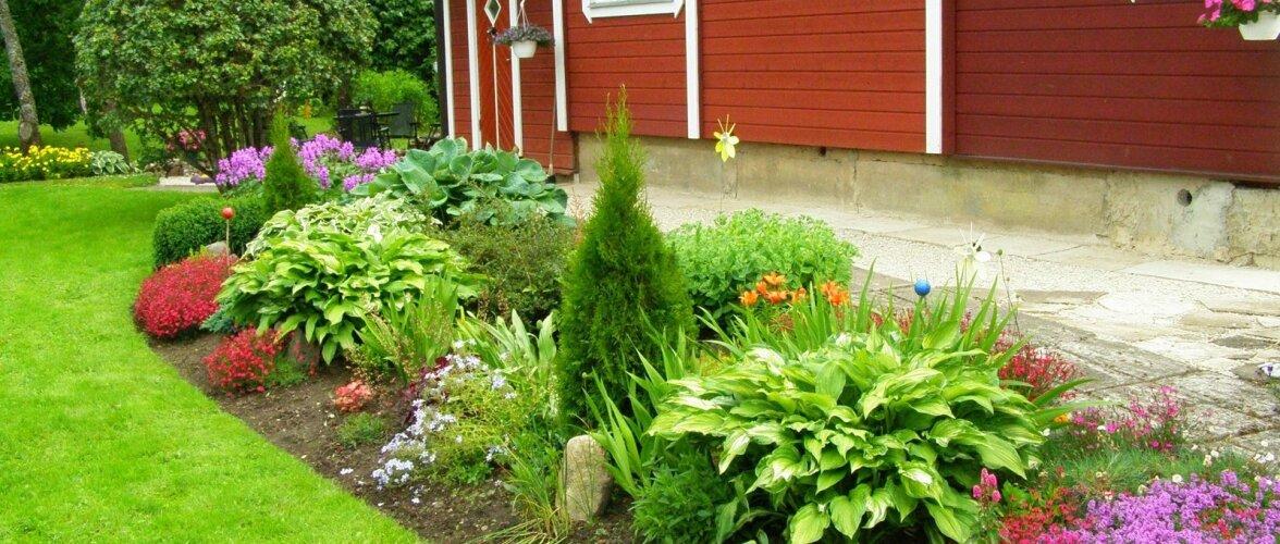 """Fotovõistlus """"Minu kodu suvel"""": Kauniks tervikuks kujundatud aed"""