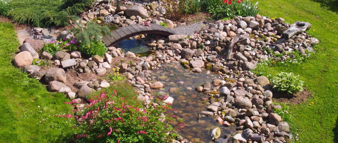 Väikese sillakesega veesilm kaunistab aeda