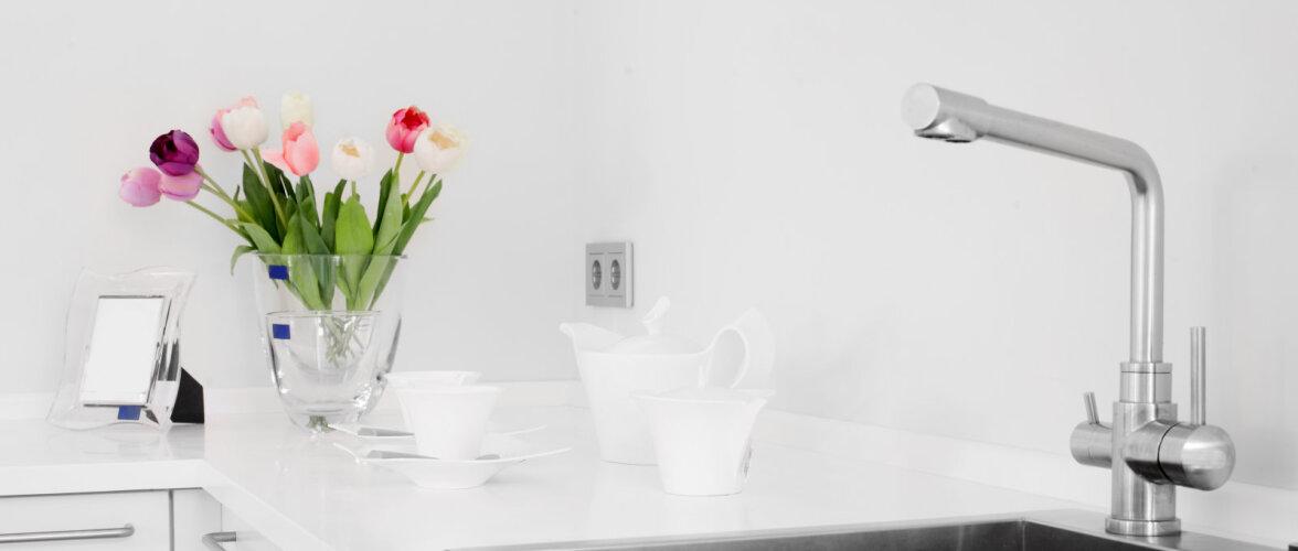 Milline valamu kööki valida? Erinevate materjalide head ja vead