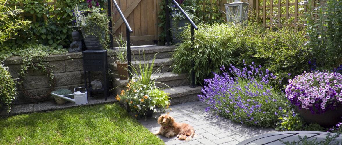 FOTOD: Väikegi aed võib pakkuda mõnusat äraolemist — vaata ideid!