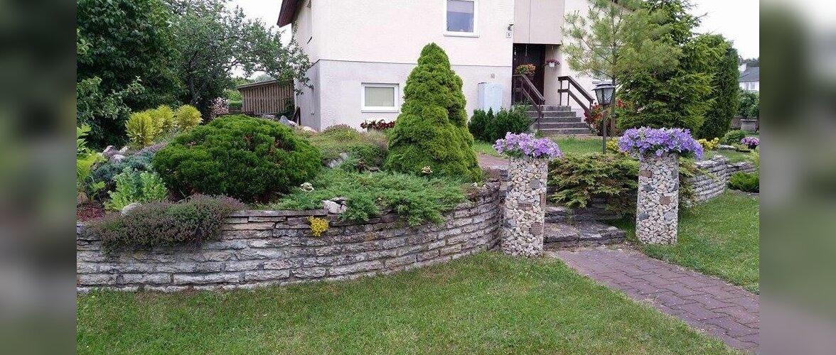 """Fotovõistlus """"Minu kodu suvel"""": Kõige kaunim aed on enda kujundatud"""