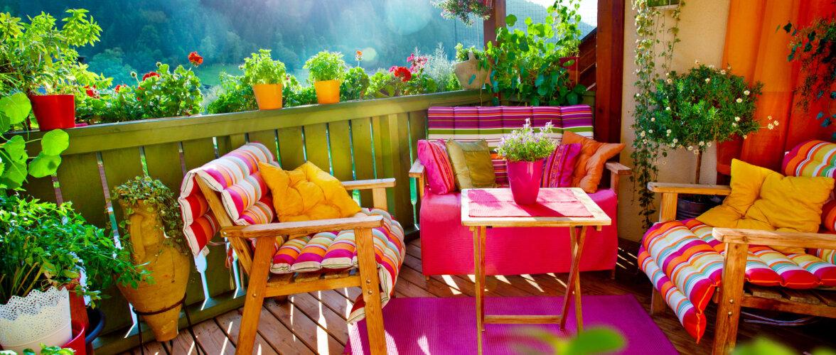 FOTOD: Veeda suvi värvide keskel — 10 värvikat ideed