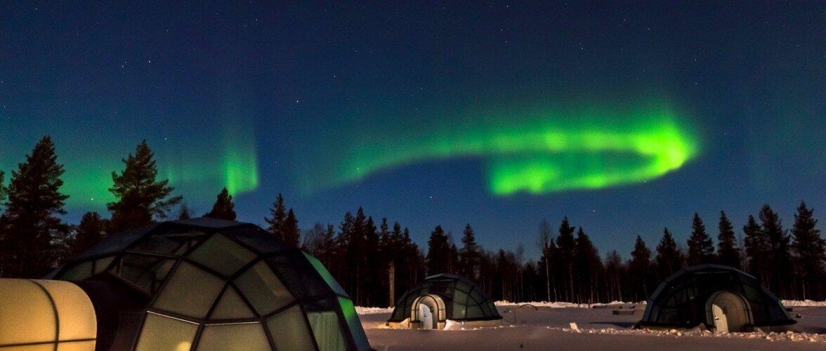 Увидеть северное сияние: 9 лучших отелей с фантастическими видами