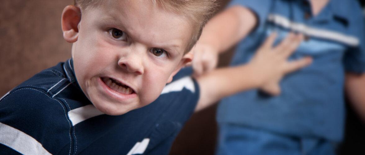 Mida teha, kui laps kipub kaklema