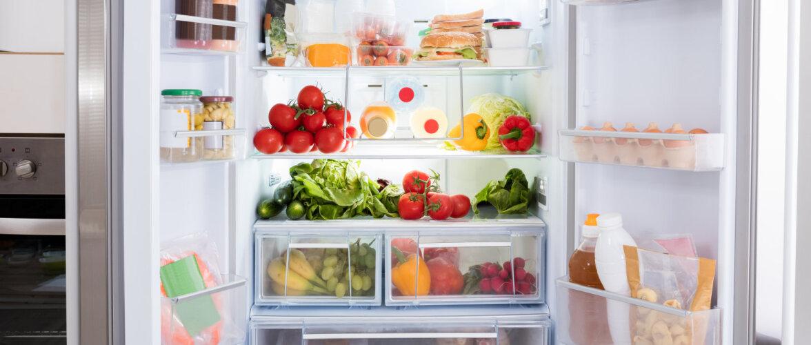 TASUB TEADA | Kui kaua erinevad toidud külmikus säilivad?