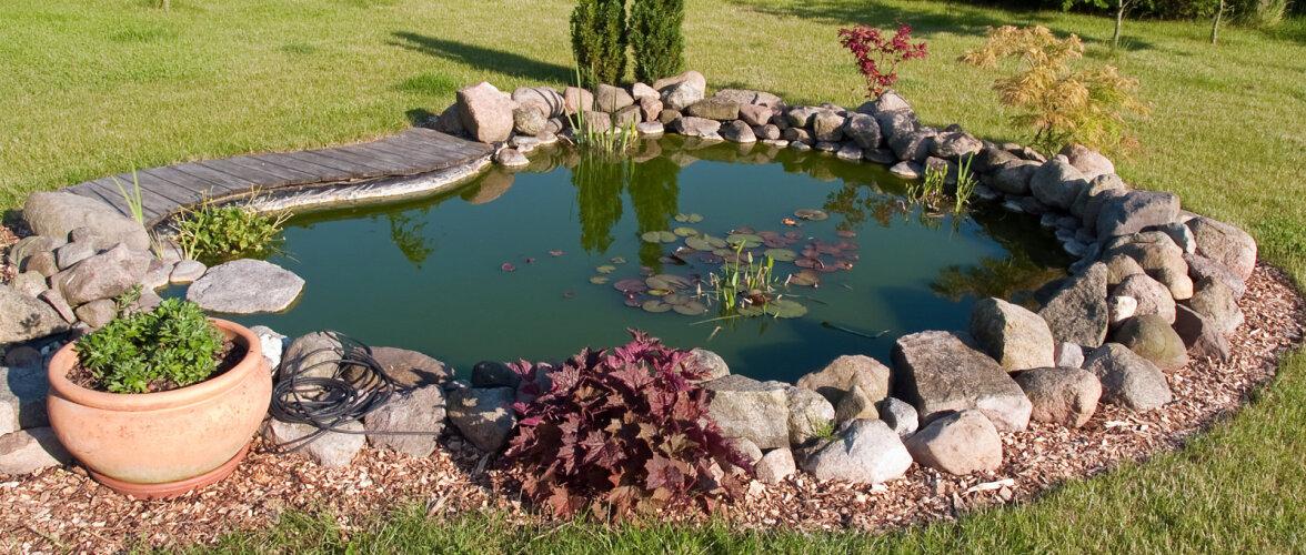 NÕUANDED: kuidas rajada aeda kaunis ja väikelastele ohutu tiik