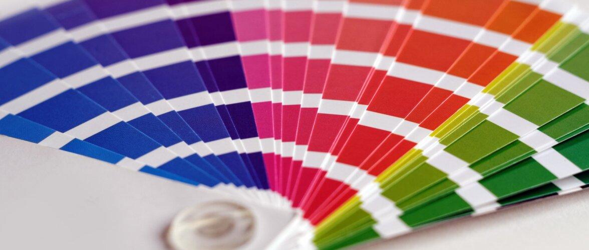 VÄRVIKOOL   Värviteooria põhitõed — mida omavahel võib segada, et tuleks meelepärane toon?