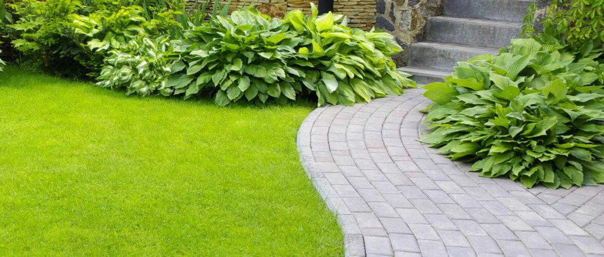 Hakkad aeda rajama kiviparketti? Loe, millised on uuemad trendid