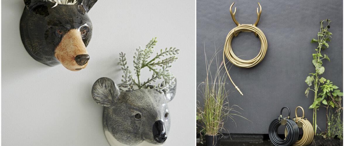 Loomariigist inspireeritud — trendikaid sisustusideid koju ja aeda