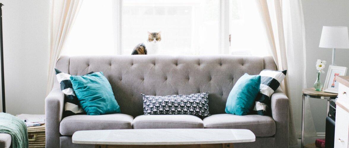 Viis põhjust, miks eelistada tavapoe mööblile teise ringi mööblit