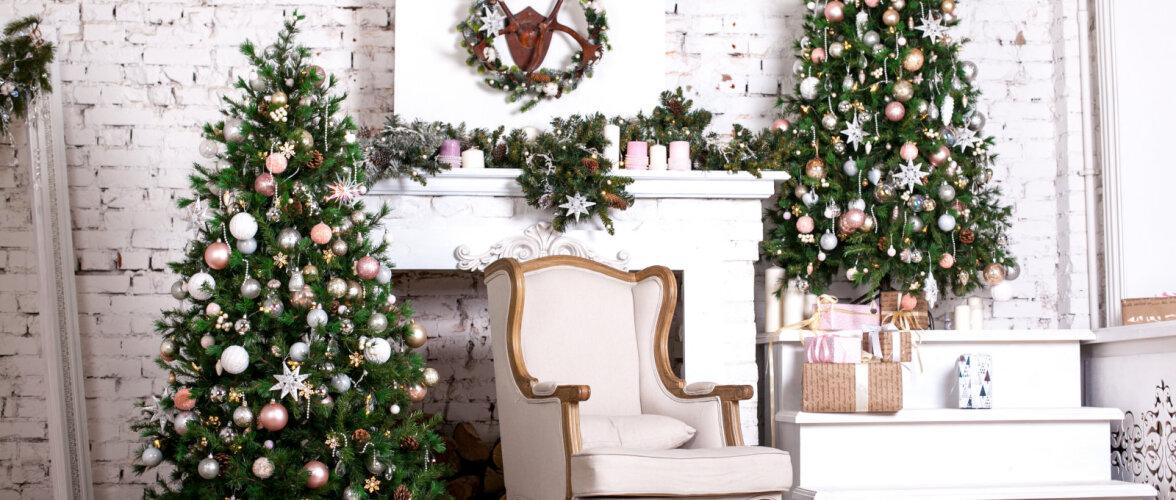 Mida jõulupuu valikul silmas pidada ja milliseid vigu vältida, et kuusk kaua ilus püsiks?