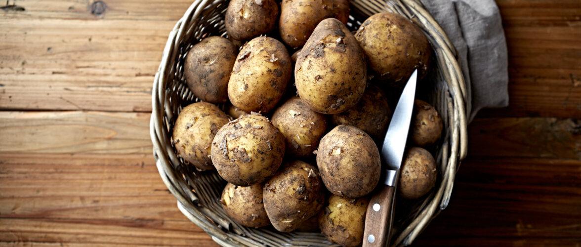 NUTIKAS LAHENDUS | Kuidas köögis sibulaid ja kartuleid hoida