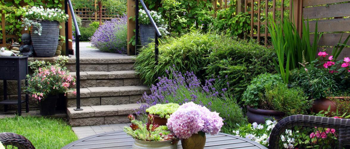 Üheksa nippi, kuidas kujundada oma aeda mõnus istumisnurgake