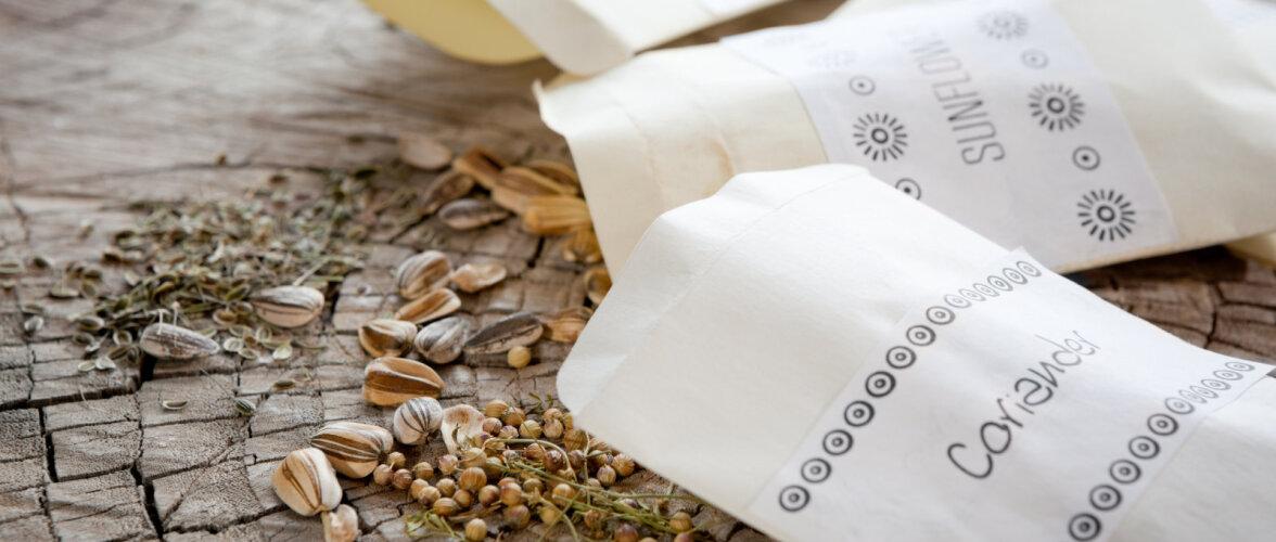 KÜLVIAEG | Kas tead, kuidas seemneid õigesti säilitada?