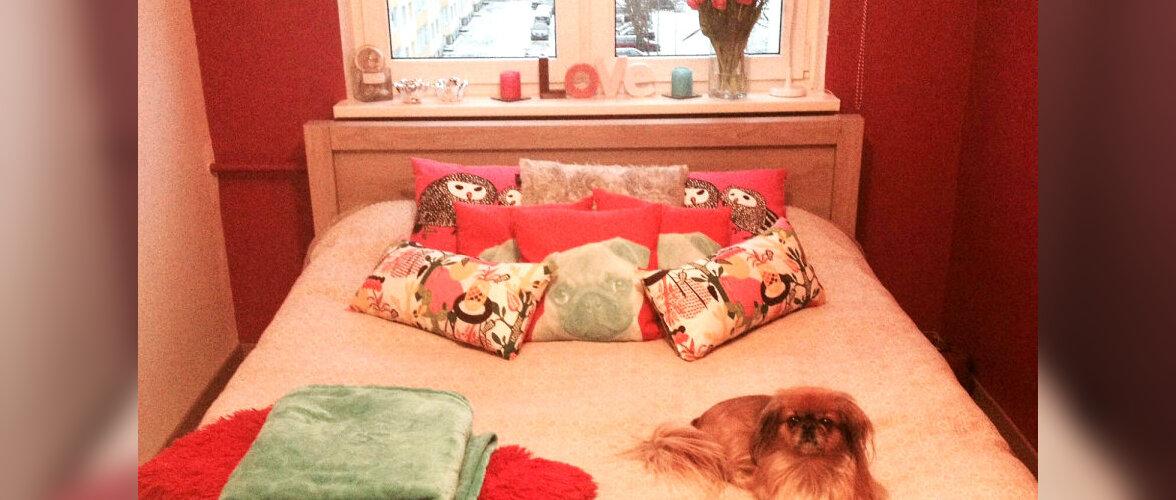"""Fotovõistlus """"Minu kaunis magamistuba"""": Maitsekalt kujundatud roosa tuba"""