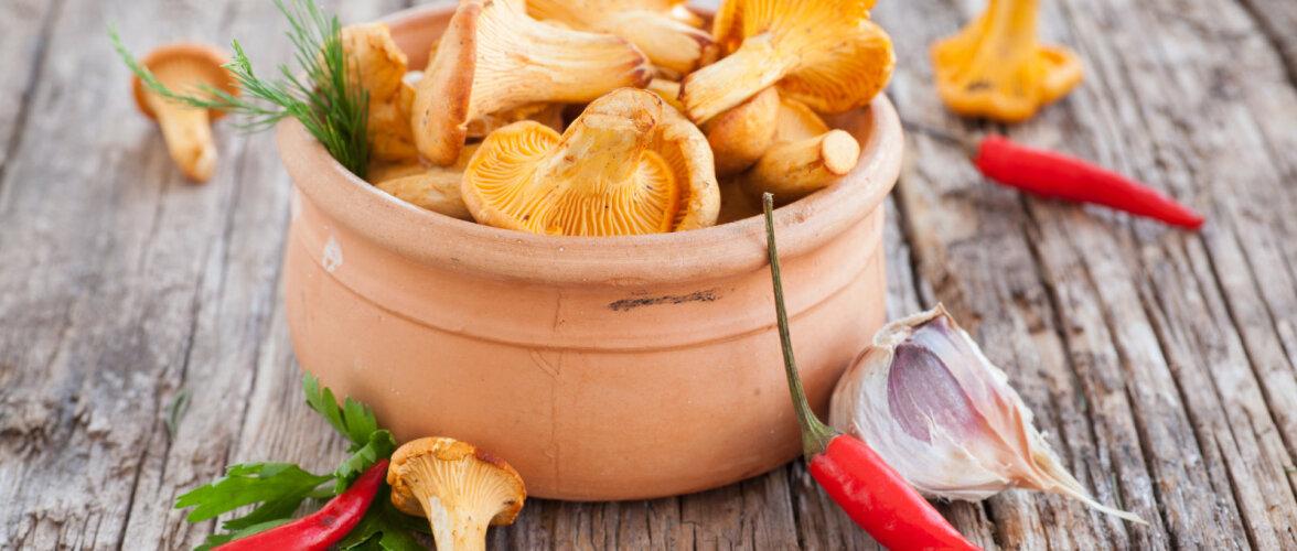 RETSEPT | Hoidista kukeseeni lihtsa aiasaadustest salatina