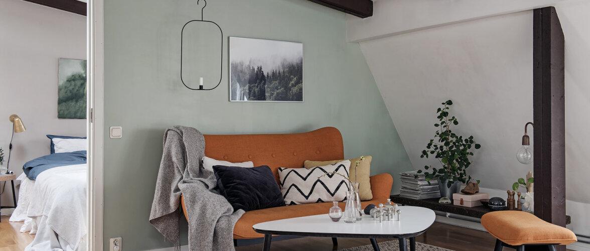 Mahedates toonides katusekorter võlub läbimõeldud värvilahendusega