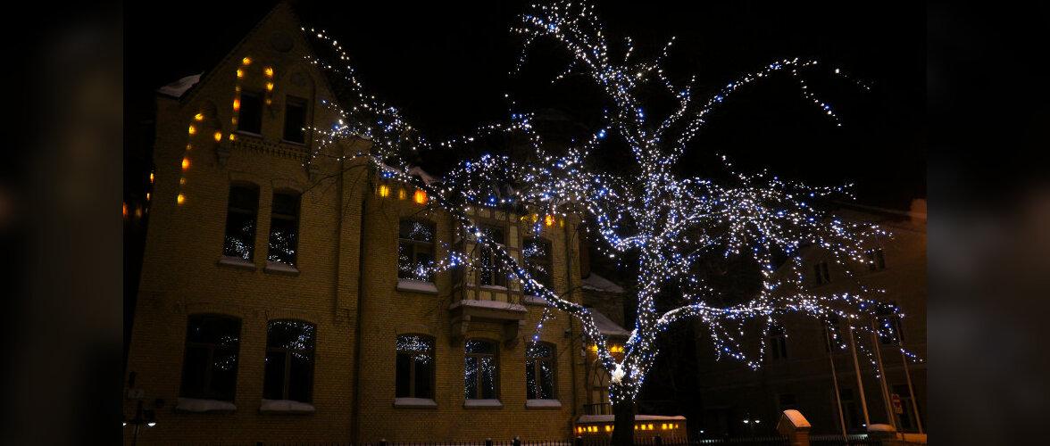 Aed ja maja jõuluks särama — kas hõõglamp või LED?